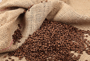 Shot of Coffee Beans in a Bag