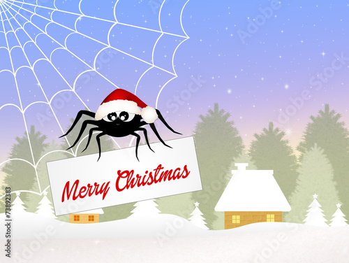 Fototapeta spider at Christmas