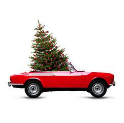 Weihnachtsbaum im Roten Caprio