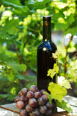 Red wine bottle with grape