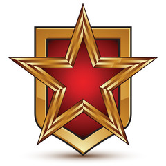 Heraldic 3d glossy shield icon with a golden star, graphic desig