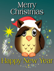 Eule - Christmas Greeting Card