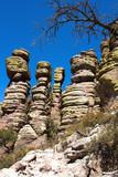 Stone Hoodoos at Chiricahua poster