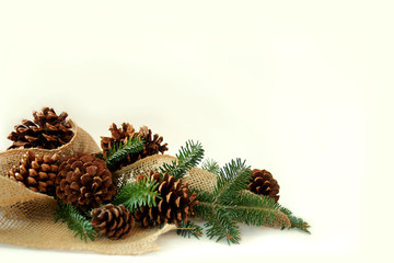 Christmas Tree Branches, Pine Cones, and Burlap Border White Bac