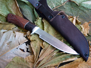 Knife tourist from Damascus  steeld