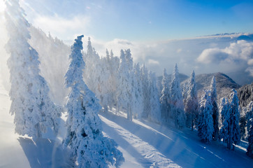 Mountain landscape in winter, with snow on trees and blue sky