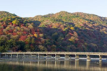 京都嵐山の秋