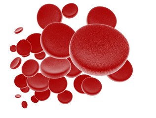Red blodd cells