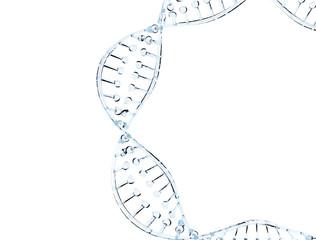 Glass DNA model