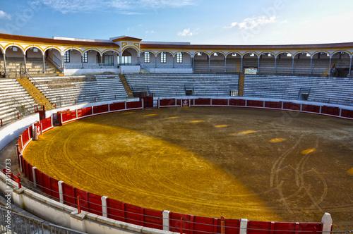 Leinwandbild Motiv Pozoblanco, Córdoba, España, plaza de toros, torear