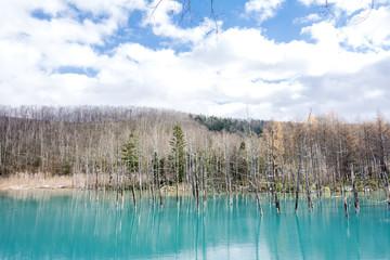 晩秋の美瑛の青い池と空