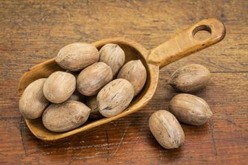 pecan nuts in rustic scoop