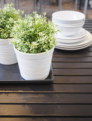 Plant on wooden table ,Home interior decoration
