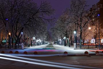 Нижний Новгород. Ночь, деревья покрыты пушистым инеем.