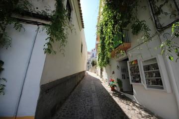 ヨーロッパ スペイン イビザ島の町並み