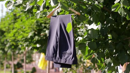 classic men's trousers on  hanger