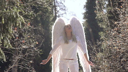 White Angel and Sun