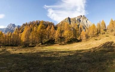 Devero Alp, colors of autumn season