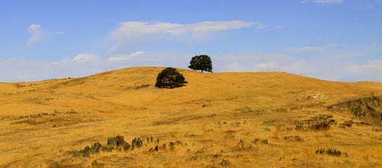 paysage de Californie du Nord