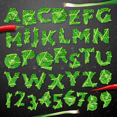 Green leaf lettuce alphabet, vector illustration.