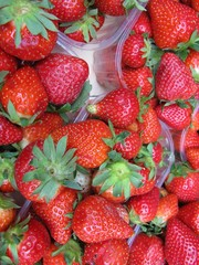 Strawberries in boxes at the greengrocer on the market place
