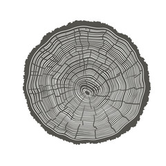 Tree Rings Illustration. Template for annual reports