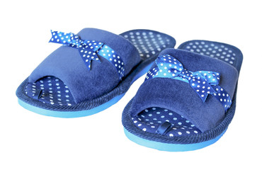 The blue house slipper