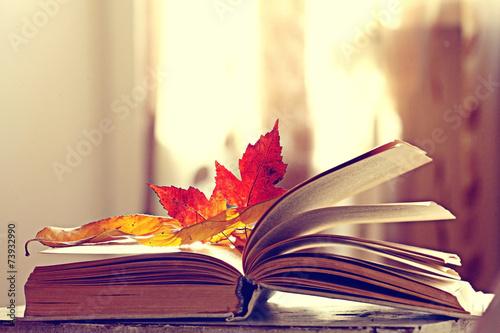 Papiers peints Vegetal book pages yellow leaves of autumn concept