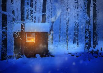 Weihnacht im Wald