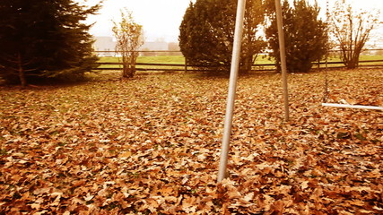 Abandoned playground full of leaves in shiny autumn season
