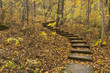 Step Trail In Woods - 73935520