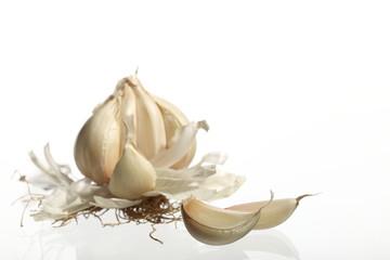 Garlic/food