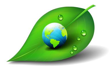 Earth on Leaf Icon Symbol