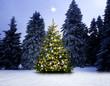 Glänzender Christbaum im Winterwald