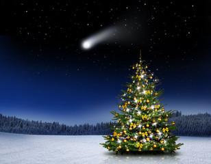 Glänzender Christbaum im Wald bei Nacht
