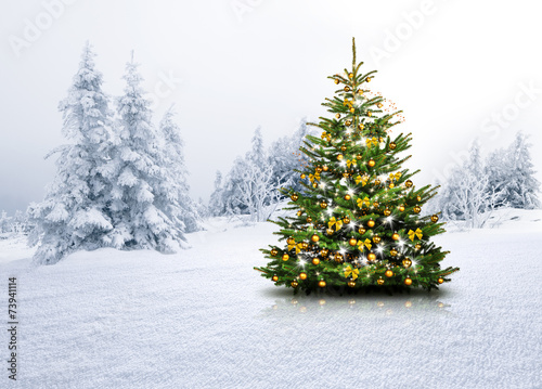 canvas print picture Christbaum im Schnee