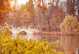 Lazienki Park  in Warsaw - 73941970