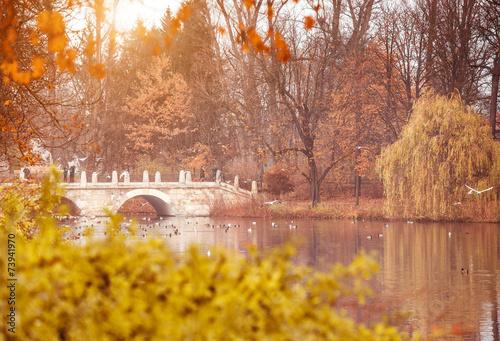 Zdjęcia na płótnie, fototapety, obrazy : Lazienki Park  in Warsaw