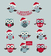 Christmas owls. Vector set.
