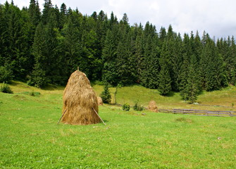 Simply countryside view in the region Apuseni Mountains