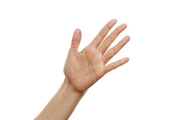 Handzeichen Fünf