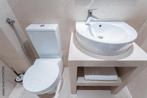 poster of Esthetic toilet