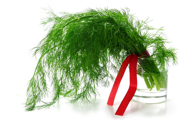 dill bunch with a red ribbon in a glass with water, isolated on