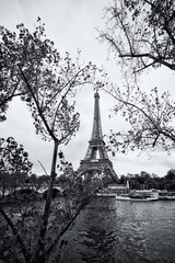 The eiffel tower in black and white, Paris