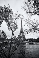 The eiffel tower in black and white, Paris © KikoStock