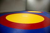 The wrestling mat