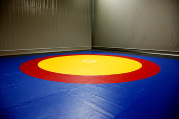 The wrestling mat