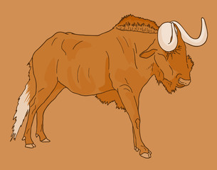Wildebeest vector draw