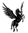 Obrazy na płótnie, fototapety, zdjęcia, fotoobrazy drukowane : Horse Wing Tattoo