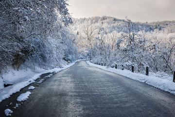 Winter road in snowy forest